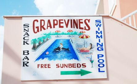 Grapevines Hotel
